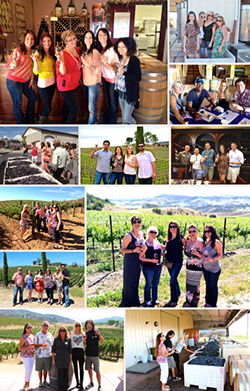Temecula Wine Tour Photo Gallery